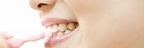 歯ぐきが腫れている 歯がぐらぐらする・血が出る